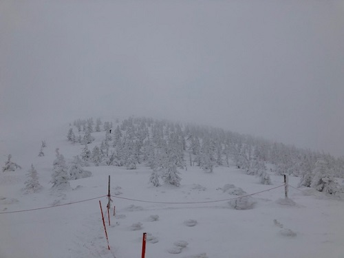 雪の安全管理検定