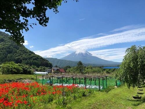 根場からの富士山
